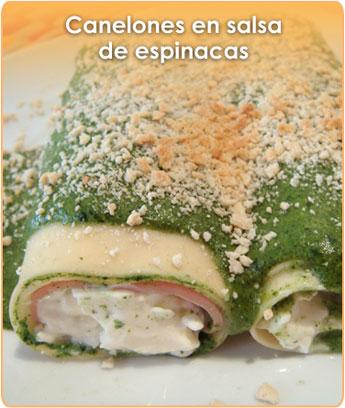 CANELONES EN SALSA DE ESPINACAS