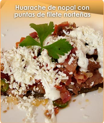 HUARACHE DE NOPAL CON PUNTAS DE FILETE NORTE�AS